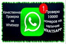 Проверка базы на наличие номеров с WhatsApp 10 - kwork.ru