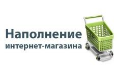 Ручное наполнение магазина товарами 9 - kwork.ru
