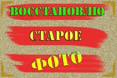 Размножить распределить файлы на листе 12 - kwork.ru