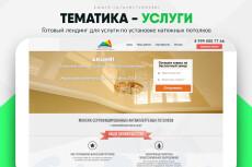 Скопировать Landing page, одностраничный сайт, посадочную страницу 227 - kwork.ru