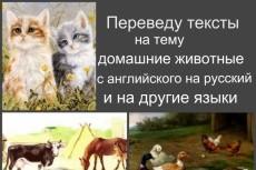 Могу посчитать декомпозицию воронки вашего бизнеса и скину скриншоты 6 - kwork.ru