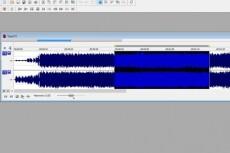 Конвертация форматов аудио файлов в любой другой 20 - kwork.ru