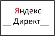 Настройка Яндекс Директ + бонус настройка метрики 32 - kwork.ru