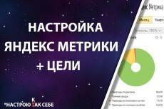 Настрою Метрику и Аналитику 12 - kwork.ru