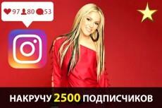 Настрою Яндекс Директ РСЯ и привлеку много клиентов для Вашего Бизнеса 4 - kwork.ru