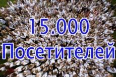 Увеличу количество уникальных посетителей от 50 до 500 в сутки + Бонус 13 - kwork.ru