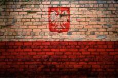 Premium перевод с польского и на польский язык 23 - kwork.ru