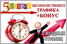 Привлеку 55 уникальных рефералов в ваш проект 21 - kwork.ru
