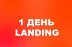 Создам лендинг на wordpress 14 - kwork.ru