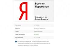 Видеокурс о настройке Яндекс.Директ 16 - kwork.ru