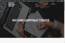Магазин-каталог без корзины на wordpress 28 - kwork.ru