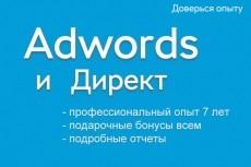 Настрою контекстную рекламу в Директ или Adwords 5 - kwork.ru