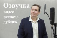 Диктор, озвучка персонажей компьютерных игр, анимаций, приложений 28 - kwork.ru