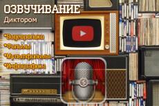 Озвучу для Вас рекламный или любой другой видеоряд 25 - kwork.ru