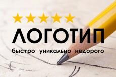 Сделаю логотипы,дизайн фирменных носителей 33 - kwork.ru