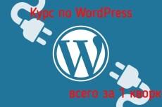 Обучение работе с Wordpress для начинающих 22 - kwork.ru