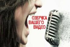 Красиво и сочно озвучу видеоролик и начитаю текст 14 - kwork.ru