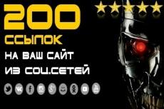 250 вечных ссылок на ваш сайт из социальных сетей 14 - kwork.ru