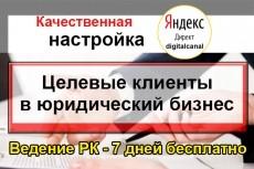 Настрою Яндекс. Директ + метрика и цели в подарок 4 - kwork.ru