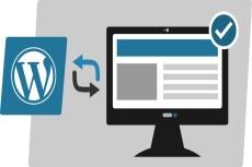 Wordpress + домен + хостинг 23 - kwork.ru
