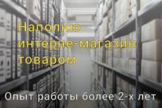 Наполнение сайта, добавление товаров в интернет-магазин 32 - kwork.ru