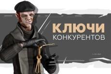Keys.so: 25 сайтов (все отчеты) выгрузка всех ключей конкурентов 12 - kwork.ru