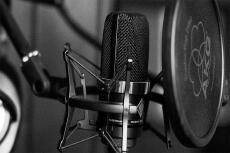 Проф. озвучивание аудиокниг, разных игровых персонажей, проектов 4 - kwork.ru