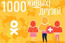 17000 уникальных посетителей на сайт с поисковых систем за 24 часа 20 - kwork.ru