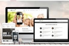 Premium шаблон для Веб-студии, РА, для Фрилансера 29 - kwork.ru