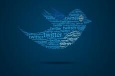 Добавлю ваш аккаунт в Твиттер в 50 разных списков 3 - kwork.ru