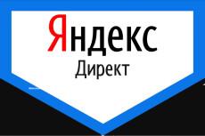 Создание и настройка рекламы под ключ на Поиск - Яндекс Директ 14 - kwork.ru