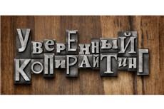 Курс - Продающий Копирайтинг + Бонус 8 - kwork.ru