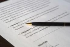 Первичная оценка документов по судебному делу, составление иска 26 - kwork.ru