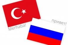 Профессионально переведу с Турецкого и на Турецкий 14 - kwork.ru