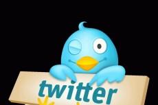 1700 подписчиков в ваш аккаунт Twitter 9 - kwork.ru