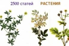 Сайт за 500 рублей тематика ремонт автомобилей +автонаполнение и бонус 15 - kwork.ru
