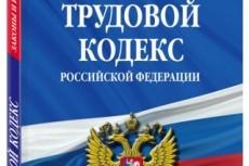 Оценю действия Вашего работодателя на соответствие трудовому кодексу 7 - kwork.ru
