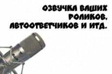 Запишу голос для автоответчика 23 - kwork.ru