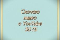 Скачаю с YouTube до 50 Гб любых видео в наивысшем качестве 22 - kwork.ru