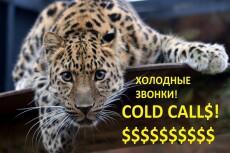 Сделаю звонок на английском языке 18 - kwork.ru