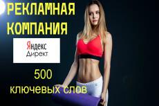 Создание рекламной кампании в Яндекс Директ на поиске + Бонус 6 - kwork.ru