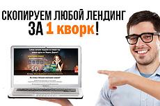 Копия любого landing page с установкой панели управления 33 - kwork.ru