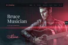Создам адаптивный сайт на Wordpress + бонусы! 11 - kwork.ru