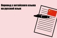 Перевод с китайского на русский. Носитель языка 11 - kwork.ru