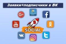 Подпишусь и поставлю лайк 2500 человек 22 - kwork.ru