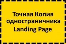 Копия Landing page с любой платформы. Лендинг, одностраничник под ключ 88 - kwork.ru