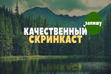 Запишу бюджетный видеообзор. Сценарий и озвучка бесплатно 34 - kwork.ru