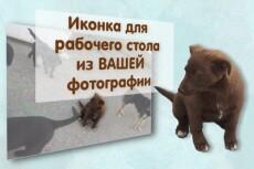 20 фотографий 5 разных растений, мхов и грибов  Северного Кавказа 7 - kwork.ru