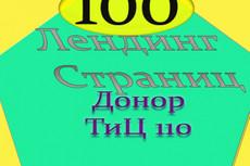 Сделаю 250 Web 2. 0 сайтов Под Ключ на Доноре Тиц 100 11 - kwork.ru