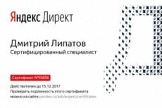 Видеокурс о настройке Яндекс.Директ 23 - kwork.ru